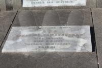 Veronikos Tamašauskienės kapas 2011